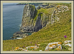 Rock Climbing 1 (dark-dawud) Tags: tenby pembrokeshire southwales people wales scenery scenic rocks sea wildflowers naturalsettings nature cliffs rockclimbing activity view uk wonderfulworld landscape coast coastal