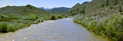 West Walker River (Pano) (joe Lach) Tags: westwalkerriver walkerriver highway395 sierranevada inyonationalforest stream flowingwater rushingwater vegetation river california joelach