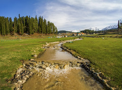 Gulmarg..............Kasmir India. (Rambonp:loves all creatures of this universe.) Tags: gulmarg jk kashmir tulips flowers yellow wallpaper red white trees green nature park day india paradise blue canon landscape sky clouds silhouette snow mountains hills hillstation touristplace tourism