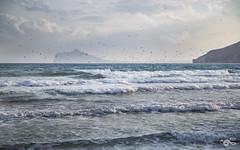Revuelo (R'Lay) Tags: mar gaviotas paisajemarino