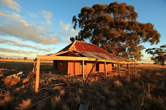 Defiant (Darren Schiller) Tags: abandoned architecture australia building corrugatediron derelict disused decaying deserted dilapidated empty evening farming farmhouse galvanisediron history heritage iron landscape newsouthwales old rural rustic ruins rusty sunset timber weathered weatherboard