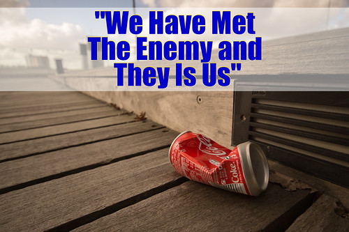 "Mindset Quote: ""We Have Met The Enemy by midwestjournal, on Flickr"