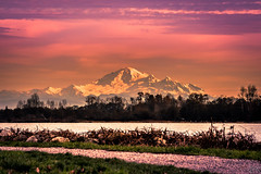 Mt. Baker (Žèę Ķ) Tags: bc canada richmond sky landscape river sunset dyke fraser washington usa mtbaker mountain cloud outdoors dusk scenic red shinning volcano