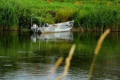 Uniejów - rzeka Warta (Marek_galeria) Tags: uniejów basen canon las river canon700d termy zamek castle