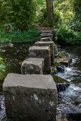Stepping stones across the river (Carol Spurway) Tags: hha harewood harewoodhouse harrogate himalayangardens historichousesassociation leeds treasurehousesofengland wetherby yorkshire gardens grounds river steppingstones stream