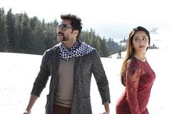 s3_33085891564_o (Suriya Fan) Tags: suriya surya si3 singam3 singam anushka kollywood tamil movies