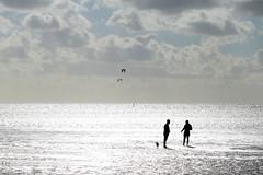 North wind (Wackelaugen) Tags: sahlenburg clouds kite nordsee northsea germanocean silhouettes dog couple minmalisme sea ocean canon eos photo photography wackelaugen tidalflat tideland tideflat mudflat