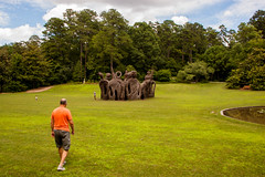 Duke Gardens June 24 2017 (32) (tommaync) Tags: dukegardens dukeuniversity durham nc northcarolina june 2017 nature gardens nikon d40 thebigeasy bruce grass sky clouds blue green orange brown sticks structure scuplture