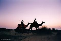 20031031 India-Rajastán (01) Jaisalmer (Nikobo3) Tags: asia india rajastán jaisalmer urban travel viajes película fujicolorsuperia100iso nikon nikonf70 f70 sigma28105284 nikobo joségarcíacobo flickrtravelaward ngc street social color culturas people gentes