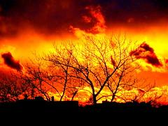 New York Sunset (dimaruss34) Tags: newyork brooklyn dmitriyfomenko image sky clouds sunset
