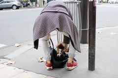 doggy bag (yaya13baut) Tags: paris parisstreets parisstreetphoto parisstreetphotography street streetphotography streetphoto streetphotographers streetphotographer streettogs dog dogs animals back fujifilm fuji fujix100s fujifilmx100s fujifilmfrance fujifilmxseries fujixseries