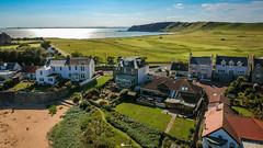Home Sweet Home | Elie (Bertie Allison) Tags: dji spark drone aerial elie fife visit scotland golf course golfhouseclub links seaside beach sea