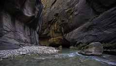 The Narrows (End-Story) Tags: narrows thenarrows hiking zion nationalpark water river virginriver canyon desert