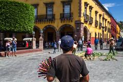 Vendedor Ambulante (wegstudio) Tags: mexico city streets architecture buildings sanmigueldeallende vendedor ambulante streetvendor