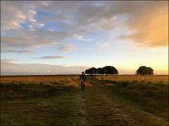 IMG_4603 (marcoderksen) Tags: mtb atb mountainbike veluwe veluwezoom 2017 hessenpad