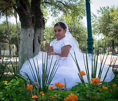 Sesion-130 (licagarciar) Tags: primeracomunion comunion religiosa niña sacramento girl eucaristia