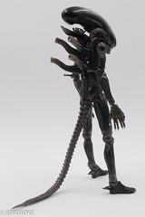 _DSC0960 (ZeroToyz) Tags: alien thedrone エイリアン revoltech 山口式 海洋堂 海洋堂山口式
