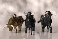Three bulls (Arkle1) Tags: macromondays three