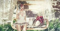 Elegance is the only beauty that never fades (Mia Foxdale ( scotiamaiden )) Tags: lode birdy chezmoi cosmopolitan kalopsia seniha muka emotions dahlia ysys poppycock ariskea anc heart indieteepee