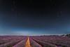 Campos de lavanda 3. (Amparo Hervella) Tags: brihuega españa spain noche nocturna circumpolar lavanda paisaje estrella largaexposición d7000 nikon nikond7000 comunidadespañola puntodefuga