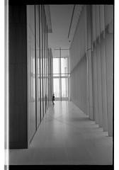 161120 Roll 451 gr1vtmax635 (.Damo.) Tags: 28mmf28 japan japan2016 japannovember2016 roll451 analogue epson epsonv700 film filmisnotdead ilfordrapidfixer ilfostop japanstreetphotography kodak kodak400tmax melbourne ricohgr1v selfdevelopedfilm streetphotography tmax tmaxdeveloper xexportx