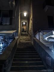 Salita dal porto (Silver_63) Tags: la spezia mare notte chiesa liguria portovenere