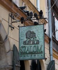 Szalom Gallery Szalom Krakow Architecture No People Outdoors Pigeon Cracow Poland Nikon (yusta76) Tags: szalom krakow architecture nopeople outdoors pigeon cracow poland nikon