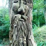 Tree Carving thumbnail