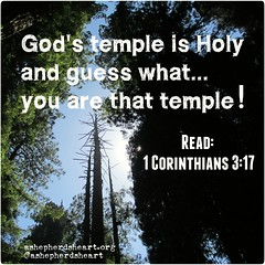 If you are in Christ, don't forget that you are His temple!   Read: 1 Corinthians 3:17 ESV    #faith #holy #temple #hope #truth #wisdom #life #encourage #encouragement #inspire #inspiration #inspirational #bible #scripture #Godsword #heart #mind #soul (ashepherdsheart) Tags: inspiration truth faith ashepherdsheart scripture encourage soul heart holy life godsword inspire bible mind inspirational encouragement strength wisdom hope temple