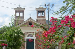 church, flowers and cables (Hayashina) Tags: colombia santafedeantioquia church flowers cables htt