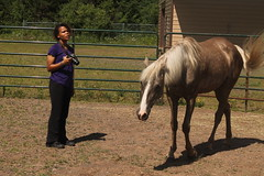 Prairieview-Horse-Therapy86 (2)