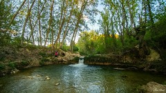 Río Vinalopó, Banyeres de Mario la, Alicante, España/Spain. (jose_raul96) Tags: nature river water waterfall trees mountain landscape spain spring view forest