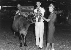 1135 (kentuckyffa) Tags: sae kentucky state fair champion jersey