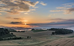*Sommer im Wittlicher Tal* (albert.wirtz) Tags: albertwirtz wittlich bergweiler rheinlandpfalz rhinelandpalatinate deutschland germany sunrise sonnenaufgang natur nature landscape landschaft erntezeit harvest getreide wald forest gebüsch gegenlicht backlight nebel dust dunst fog mist nebbia niebla brume bruma brouillard morgendunst morgennebel morgenstimmung morningmood morgenlicht earlymorning wolken clouds bluesky blauerhimmel goldenestunde goldenhour moseleifel eifelmosel eifel südeifel hiking wandern eifelsteig moselberge getreidefelder summer sommer wittlichersenke grauverlauffilter haidand09softfilter nikon d810