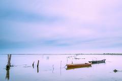 Barques al delta (margalef69) Tags: barca mar cursfotografia 2016 paissatge delta montsià