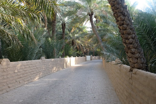An alley at the Al Ain Oasis