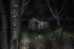 Fear (photodkx) Tags: fear cabaña noche bosque nocturna darkness oscuro oscuridad soledad alone dark miedo lobos fantasmas ghost