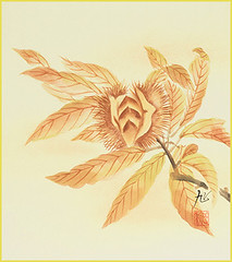 Japanese chestnut (Japanese Flower and Bird Art) Tags: flower chestnut castanea crenata fagaceae akira kagawa nihonga shikishi japan japanese art readercollection
