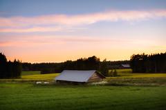 Sulla (Olli Tasso) Tags: nurmi suomi finland sunset auringonlasku barn lato maalaismaisema maaseutu pelto landscape maisema rural countryside outdoors field clouds color grass summer kesä lempäälä