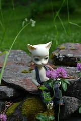 garden (11) (chibi.kagu) Tags: bjd piposdoll baha pi anthro