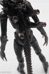 _DSC0976 (ZeroToyz) Tags: alien thedrone エイリアン revoltech 山口式 海洋堂 海洋堂山口式