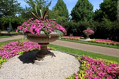 The English Gardens (Jeff G Photo - 2.5m+ views! - jeffgphoto@outlook.c) Tags: regentspark englishgardens gardens garden flowers urn