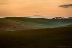 Un'alba in Santa Luce (Francesco Bianchi) Tags: sunrise countryside hills lonetree field tuscany santaluce