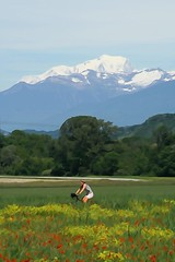 Escapade bucolique... (yoduc73) Tags: montblanc coquelicots ballade vélo champs montagne
