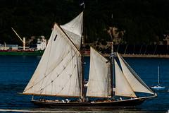 Bluenose II (langdon10) Tags: bluenoseii canada canada150 canon70d novascotia quebec ship stlawrenceriver tallship nautical outdoors