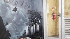 Painted Penguins (Theen ...) Tags: royaltasmanianbotanicalgardens cold door fireextinguisher glass grey hobart lumix mural painted penguins subantarticplanthouse theen wall white