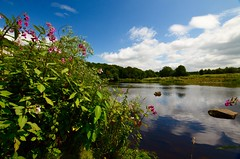 River Ribble (rustyruth1959) Tags: nikon nikond3200 sigma1020mm lancashire ribchester riverribble ribblevalley river water reflections rocks boulders outdoor clouds riverbank grass flowers himalayanbalsam weeds sky bluesky ripples alamy