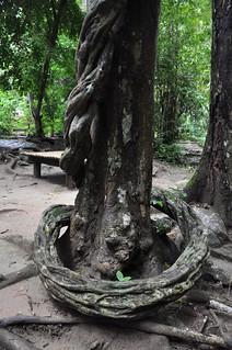kanchanaburi - thailande 16