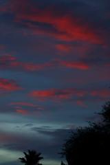 Sunset 7 29 2017 #12 (Az Skies Photography) Tags: sun set sunset dusk twilight nightfall sky skyline skyscape skycandy cloud clouds rio rico arizona az riorico rioricoaz arizonasky arizonaskyline arizonaskyscape arizonaskycandy arizonasunset red orange black salmon canon eos 80d canoneos80d eos80d july 29 2017 july292017 72917 7292017