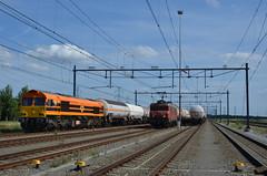 17.07.2017 (III, slot); Eerste inzetdag derde Hommel (chriswesterduin) Tags: rrf railfeeding class66 hommel 56105 sloe roosendaal cargo goederentrein trein train